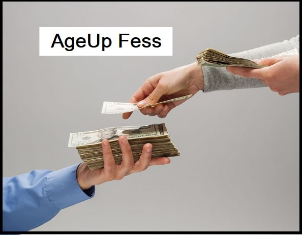 Are There Any Fees