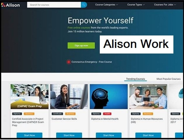 How Does Alison Work?