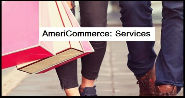 AmeriCommerce: Services