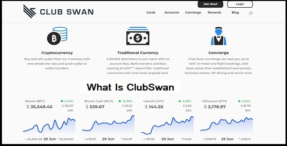 What Is ClubSwan