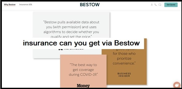 What kinds of insurance can you get via Bestow