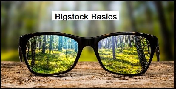 Bigstock Basics