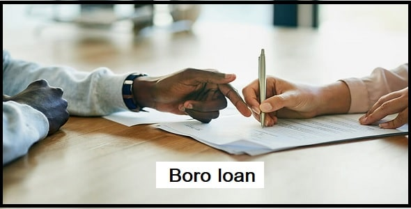 What do you need to qualify Boro loan