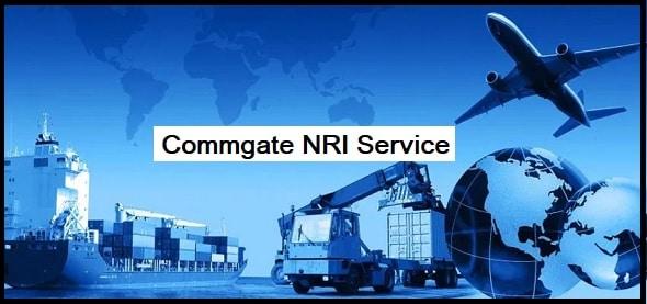 NRI Service