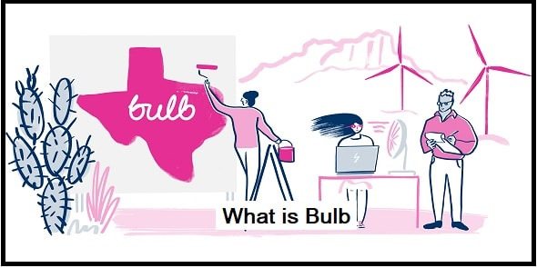 What is Bulb