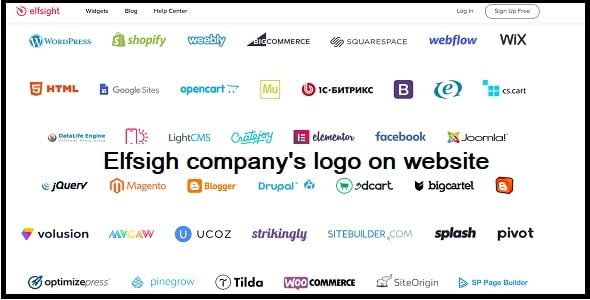 How can I put the company's logo on my website?