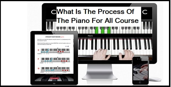 What Is The Process Of The Course?