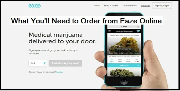 What You'll Need to Order from Eaze Online